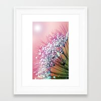 dandelion Framed Art Prints featuring rainbow dandelion by Joke Vermeer