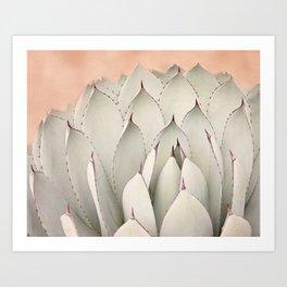 Cacti Blooms Art Print