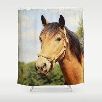kentucky Shower Curtains featuring My Kentucky Buddy by ThePhotoGuyDarren