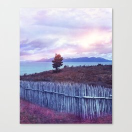 Sunset and lone tree Canvas Print