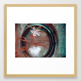 Periwinkle Framed Art Print