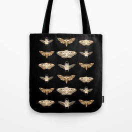insects in gold - moths and beetles Tote Bag