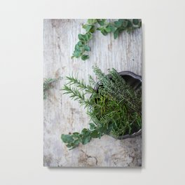 Fresh Herbs Metal Print