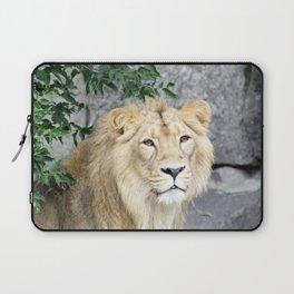 Lion 619-1 Laptop Sleeve