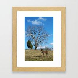 EEEEoonk. Framed Art Print