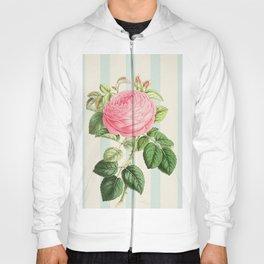 Pink Rose On Blue Stripes Hoody