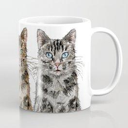Triple Tabbies Cats Coffee Mug