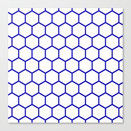 White and blue honeycomb pattern Canvas Print