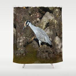 Yellow Crowned Night Heron Shower Curtain