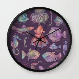 Sea life specimens II, Natural History Art Print Wall Clock
