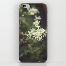 autumn white iPhone & iPod Skin