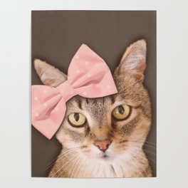 Brown Tabby Cat with Soft Pink Bow Poster