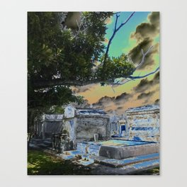 greenwood1 Canvas Print