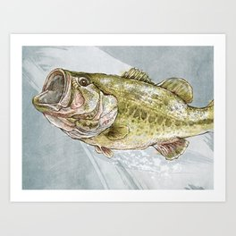 Magnificent Largemouth Bass Art Print