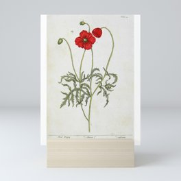 "Red Poppy by Elizabeth Blackwell from ""A Curious Herbal,"" 1737 (benefits The Nature Conservancy) Mini Art Print"