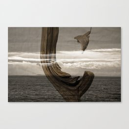 lost wood awakening Canvas Print