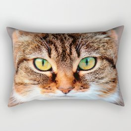 Portrait of Manx Cat Green-Eyed Rectangular Pillow