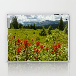 Red paintbrush with mountain view Laptop & iPad Skin