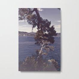 Inseparable trees Metal Print