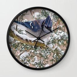 Snow Jay Wall Clock