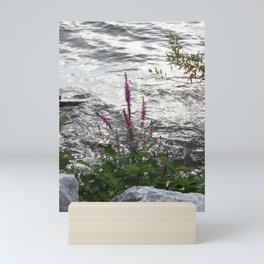 Purple Flower on the Water Mini Art Print