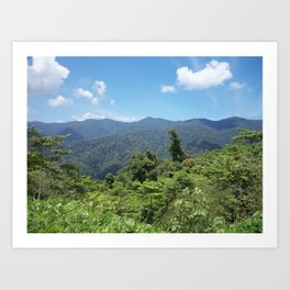 Mountain Jungle Art Print
