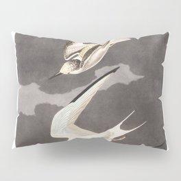 Lesser tern, Birds of America, Audubon Plate 319 Pillow Sham