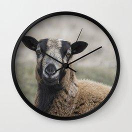 Barbados Blackbelly Sheep Portrait Wall Clock