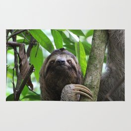 Sloth_20171101_by_JAMFoto Rug