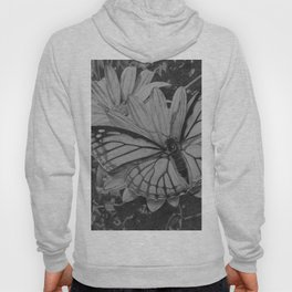 Monarch over Aster Hoody