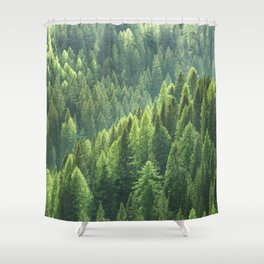 Pine tree forest in the morning fog Shower Curtain