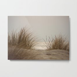 Whispering Grass Metal Print