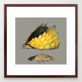 Golden Platypowl Framed Art Print