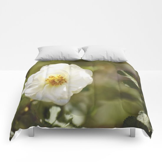 Summer Rose  Comforters