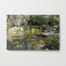 Pond with sky reflection Metal Print