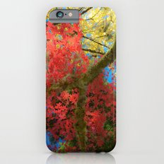 Fall Colors at Crescent Lake Lodge, 2 iPhone 6 Slim Case