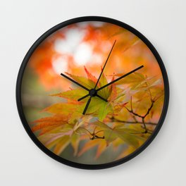 Red and Green Maple Leaves at Koko-en Garden in Himeji, Japan. Wall Clock