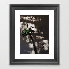 shadow palm Framed Art Print