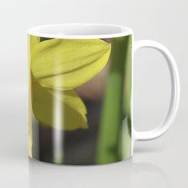 Golden Daffodil Coffee Mug