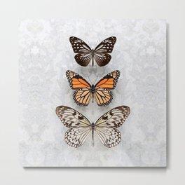 Three Speckled Butterflies Metal Print