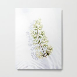 Floating Branch Metal Print