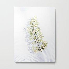 Floating Branch Metal Print