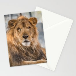 Lambert the Lion All Grown Up Stationery Cards