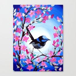 Superb Fairy Wren Canvas Print