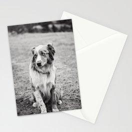 Black & White Ranch Dog Photo Stationery Cards