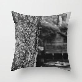 Lakehouse Throw Pillow