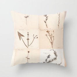 Vintage Herbarium Botanical Collection 1860 Throw Pillow