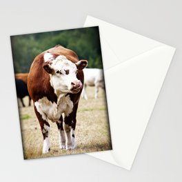 Herefordshire Cow Stationery Cards