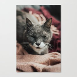 Our love is God Canvas Print
