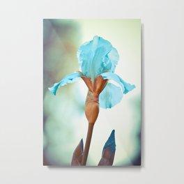 Dipinto di blu Metal Print